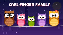 The Finger Family Collection- Owl Family Nursery Rhymes - Animal Finger Family Collection