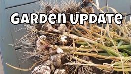 July Garden Vlog