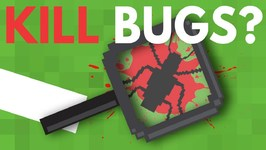 What Would Happen If All The Bugs Died