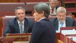 Gay Australian Senator Slams Government Position on Same-Sex Marriage Debate