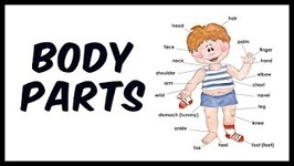 Body Parts For Kids - My Body Parts For Kids - Preschool Learning Videos For Kids