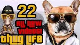 Thug Life - All New Videos - 22