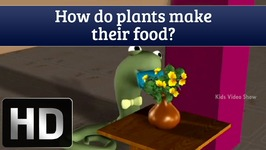 How Do Plants Make Their Food - Interesting Facts About Plants - Science Facts For Kids