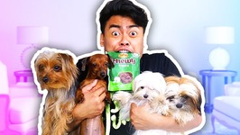 EATING PUPPY SNACKS WITH PUPPIES CHALLENGE