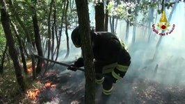Firefighters Battle Blaze in Northern Italian Forest