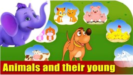 Animals And Their Young Ones - Learning Song For Children