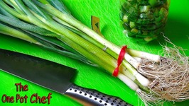 Quick Tips - Saving Leftover Spring Onions