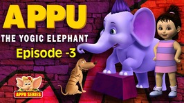 Episode 3 -  Meet The Royalty - Appu - The Yogic Elephant