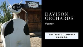 Family Farm Day At Davison Orchards in Vernon British Columbia