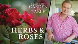 Fresh Herbs Cooking And Harvesting - Garden To Table 201