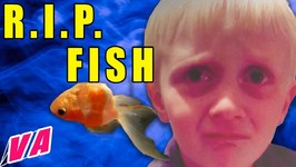 Kids React to Dead Pets - R.I.P. Fish