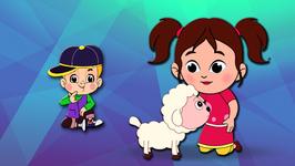 Mary Had A Little Lamb  Children's Popular Nursery Rhymes