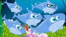 Five Little Sharks - The Shark Song - Flying Shark - Nursery Rhymes Songs - Kids Tv Nursery Rhymes