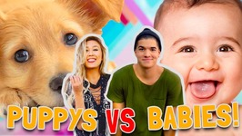 PUPPIES vs BABIES - CUTE CONTEST