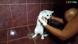 September Funny 14 Bath time is necessary