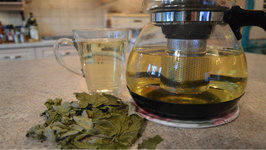 How To Brew Organic Red Currant Leaf Tea - Made In Niagara