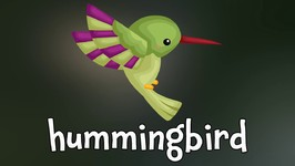 Birds - Learn about Birds