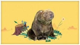 Big Brown Boogieing Bear
