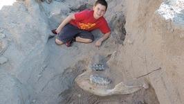 Boys Finds Mastodon Skull Hiking in Las Cruces