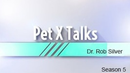 Pet X Talks - Dr. Rob Silver - Medical Cannabis Part 1- What every pet parent needs to know