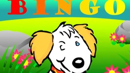 Bingo Nursery Rhyme - Learn Words in Spanish Espanol