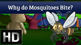 Why Do Mosquitoes Bite - Q and A