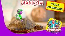 Project Tortoise - Floogals Takeover On Zeekay Junior