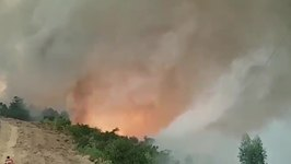 Fire Tornado Spins, Spits Flames During Wild Blazes in Central Portugal