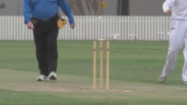 Cricket Teams Stumped by Bail Balancing on Wicket