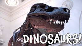 Dinosaurs! Fun Dino Facts for Toddlers and Preschoolers