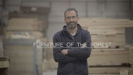 Furniture Of The Forest