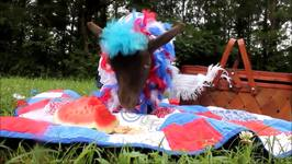 Sweet Goat is All Set For Independence Day