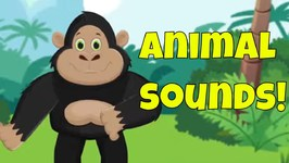 Animals at the Zoo! An Animal Sounds Song for Preschoolers and Toddlers