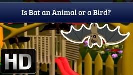 Is Bats An Animal Or A Bird?
