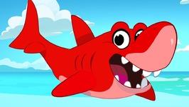 Morphle The Shark - Episode 21