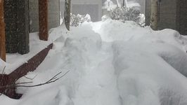 More Than a Foot of Snow Falls in Silverthorne, More on the Way
