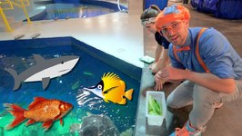 c48d78e3 Blippi Visits The Aquarium - Educational Fish and Animals for Kids and  Toddlers