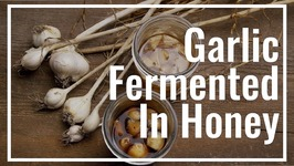 How To Make Garlic Fermented In Honey