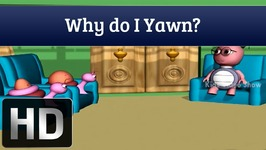 Why Do I Yawn - Q and A
