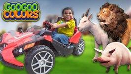 Goo Goo Gaga and Zoo Animals Play Hide n Seek! Learn To Count To 5