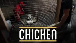 Chicken - How To Make Everything- Sandwich (7/12)