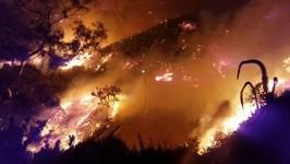 Thomas Fire Scorches Over 50,000 Acres in Ventura, California