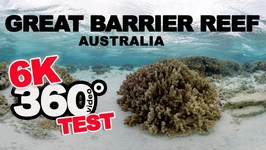 6K 360 video test - Great Barrier Reef Australia underwater