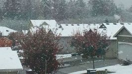 Snow Falls Across Puget Sound Area, Moving North of Seattle
