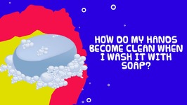 How Do Hands Become Clean When I Wash It With Soap - Important Facts For Kids