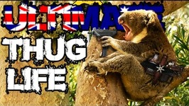 Ultimate Thug Life Compilation - 131 - Australia Special