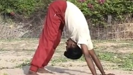 Yoga Pranayama - Surya Namaskar - Helps In Weight Loss