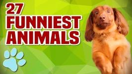 27 Funniest Animals - Season Finale Promo