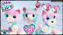 Little Live Scruff a Luvs with Candy Floss Fur  Did Someone say Llama?