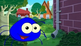 Incy Wincy Spider - Spider Song - Blue Round Spider